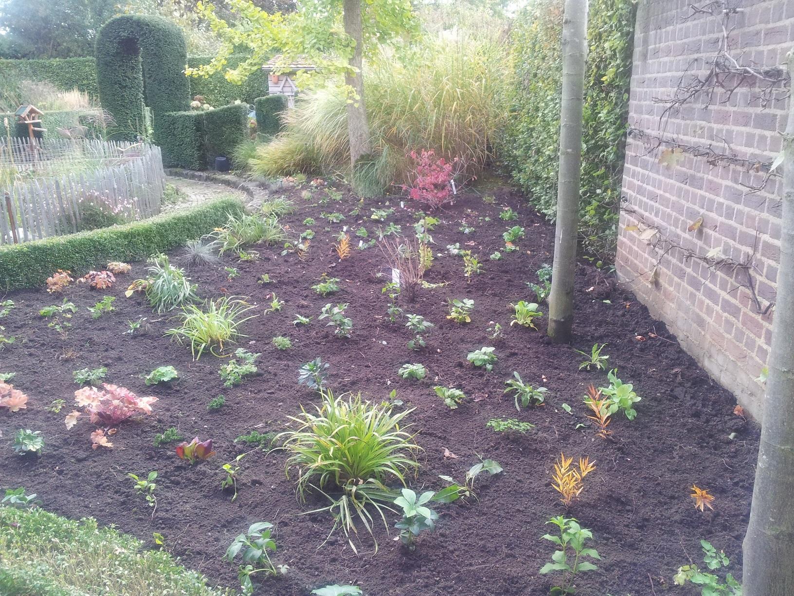 Beplantingsplan Natuurlijke Tuin : Beplantingsplannen